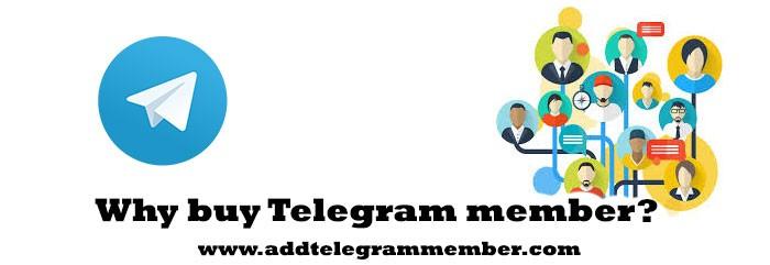 Why-buy-Telegram-member